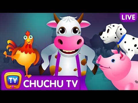 Farm Animals, Wild Animals & More ChuChu TV Surprise Eggs Learning Videos - Live Stream