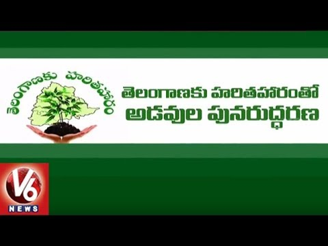 Haritha Haram : CM KCR Asks Officials To Use MNREGA Funds For Plantation Programme | V6 News