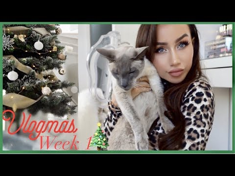 VLOGMAS WEEK 1 🎄 PUTTING UP THE TREE | Coco Lili
