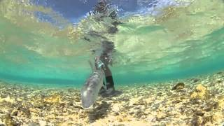 Trailer: Waypoints from Confluence Films - Fly Fishing Film