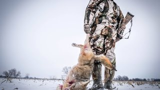 Coyote Hunting: Dirt Naps 5