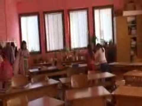 Scuole Waldorf e Montessori,Romania 19 feb10 (1)