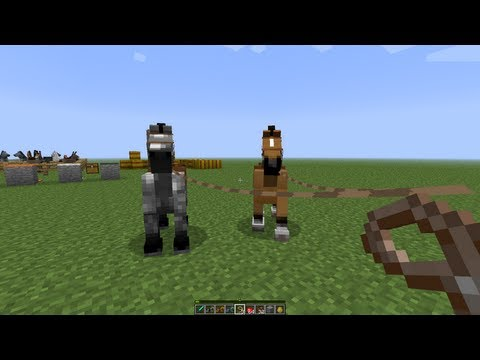 MineCraft 1.6 Snapshot Taming Horses. Donkeys. Leashes. Carpets & New Launcher!