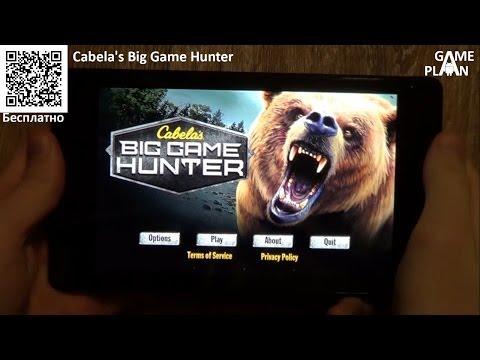 Game Plan #397 Голодный медведь