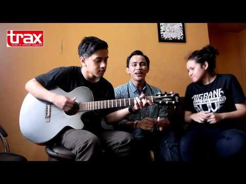 HiVi Acoustic