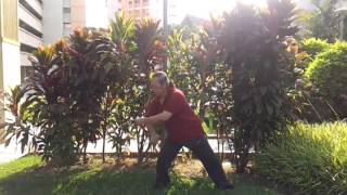太极气功棒与太极尺 Taiji Qigong Baton and Taiji Ruler