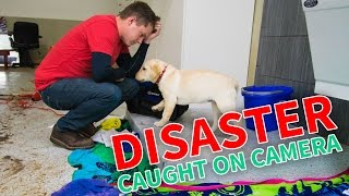 DISASTER IN THE NEW HOUSE CAUGHT ON CAMERA!