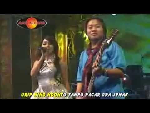 Rina Amelia - Tanpo Bojo Ra Kepenak (Official Music Video) - The Rosta - Aini Record
