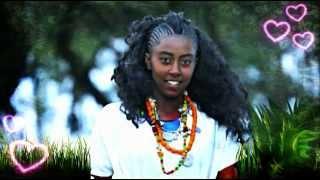 Hirphaa Gaanfuree - Bareeduu Borana ባረዱ ቦራ (Oromiffa)
