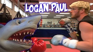 SHARK PUPPET TRAINS LOGAN PAUL!!!!!!