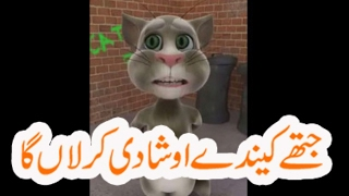 Funny   Talking Tom Funny Videos In Hindi,Urdu,Punjabi