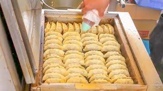 japanese street food - japanese dumplings GYOZA 餃子