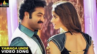 Shakti Songs | Yamaga Unde Video Song | Jr NTR, Ileana | Sri Balaji Video