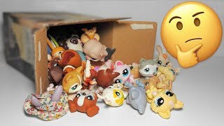 I bought an LPS mystery box?