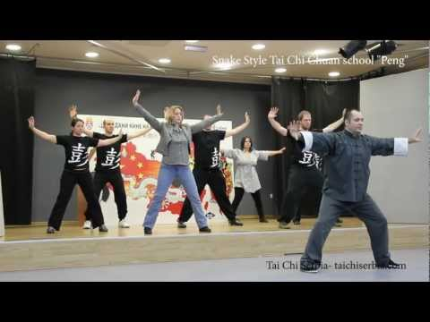 Qi gong exercise for health by Snake style Tai chi chuan school