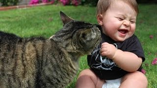 Funny Babies Laughing Hysterically at Cats Compilation (2017)