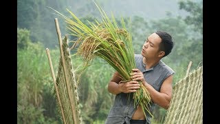 Primitive Skills: How to Harvest Rice? part3: tool