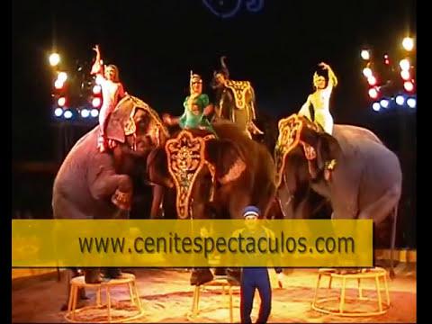 Función Circo Atayde