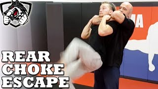 How to Escape a Standing Rear Choke w/ Bas Rutten