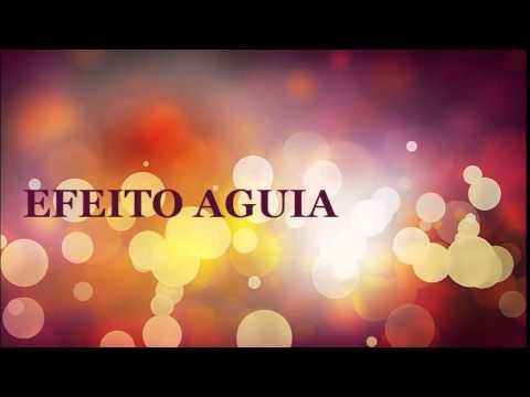 EFEITO SONORO  AGUIA -  EFFECT VOICED  EAGLE - QUALIDADE VINHETA EFEITO GRATIS 2014