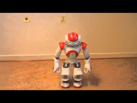 Nao – The walking calculator