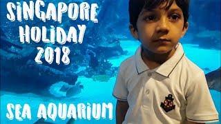 SINGAPORE HOLIDAY 2018 | Sea Aquarium Singapore