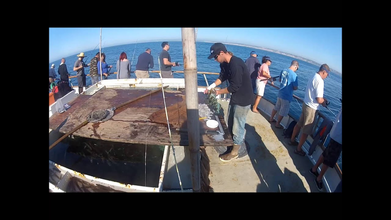 San diego lingcod and halibut fishing youtube for Fishing license san diego