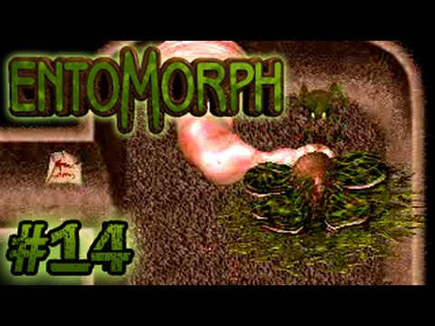 LP Entomorph: Plague of the Darkfall 13: Thelyd Lair 2