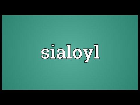 Header of sialoyl