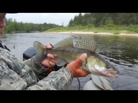 Ловля щуки. Видео где и как поймать щуку спиннингом на колебалку. Часть 5.