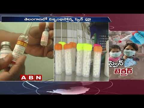 తెలంగాణలో వేగంగా వ్యాపిస్తున్న స్వైన్ఫ్లూ | Swine flu cases on the rise in Telangana | ABN Telugu