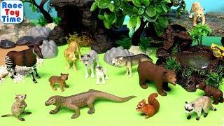 New Schleich Wildlife Toy Animals Figures 2019 - Fun Toys For Kids