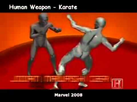 human weapon : karate, muay thai and savate Image 1