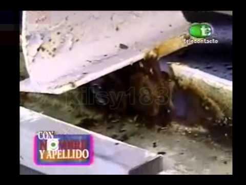 ORLANDO REYES CON NOMBRE Y APELLIDO kilsy183 15)