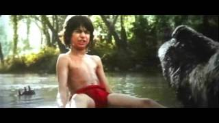 The Jungle Book  hindi BEar Song  kudrat ki zarooratein