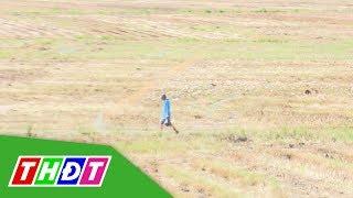 Cảnh báo nguy cơ sét đánh đối với người chăn vịt ngoài đồng trống   THDT