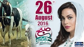 Cow Mandi Special | Subah Saverey Samaa Kay Saath – 26 Aug 2016