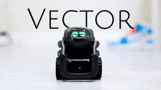 Vector: The Ultimate Smart Home Robot is Here!