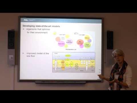 Introduction to Marine Ecosystem Modelling