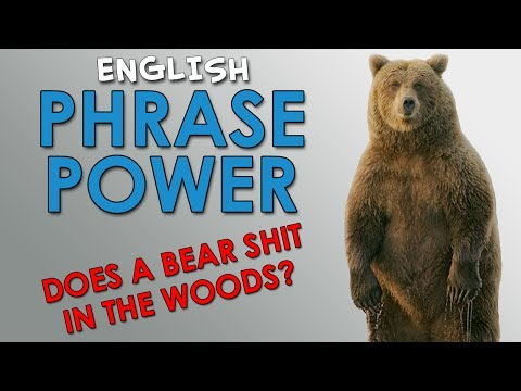 Phrase Power – 2 – Does a bear shit in the woods? – How to Sound Like Native English Speakers