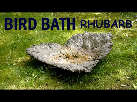 Moulding / Casting Concrete Bird Bath with Rhubarb Leaves