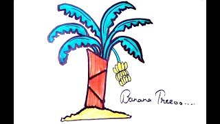 All Clip Of Banana Tree Drawing For Kids Bhclip Com