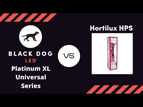 First 1000 Watt Hid Vs Led Grow Light Timelapse Black