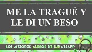 Me La Trague Y Le Di Un Beso - Los Mejores Audios Y Videos Whatsapp