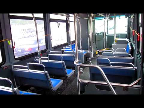 LadyNinja's Random Vlogs - Mother's Day Outing: Bus Trip To Long Island