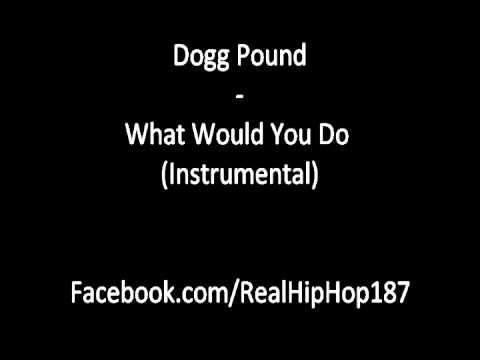 Tha dogg pound what would you do lyrics