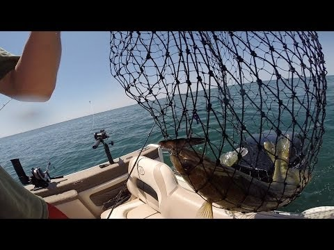Lake Erie Walleye Fishing - Tale of Two Days