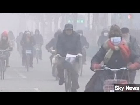 Smog Shuts Down Chinese City of 11 Million