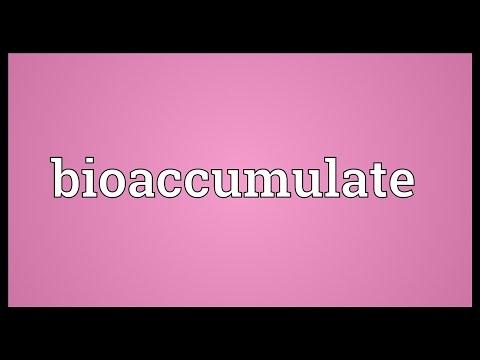Header of Bioaccumulate