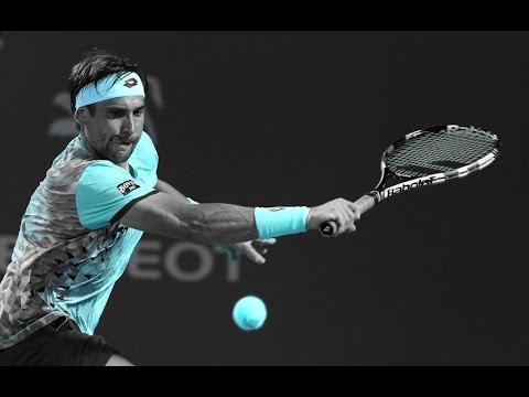 David Ferrer 2016 | Until The Last Ball | HD